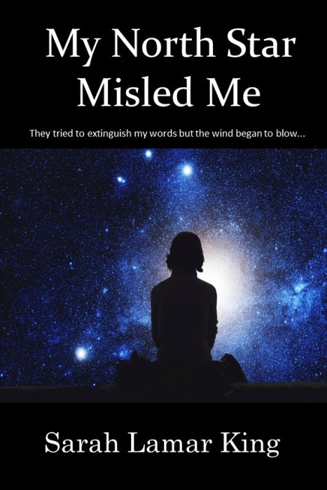 my-north-star-misled-me-cover