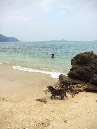 Tony pic at beach